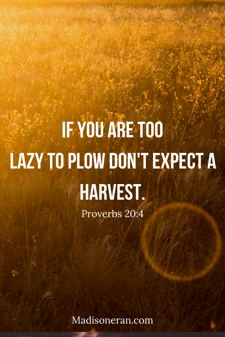 If you are too lazy to plow don't expect a harvest.